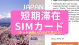 【アジア在住者向け】日本帰国時のスマホSIMカードは、ネット通販「LAZADA」で買おう!